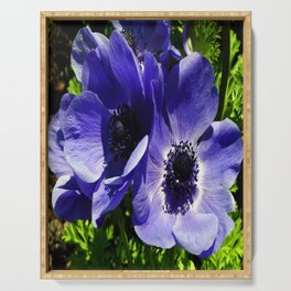 Two Blue Mauve Anemone - Close Up Windflowers  Serving Tray