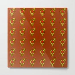 Symbol of Transgender 48 Metal Print
