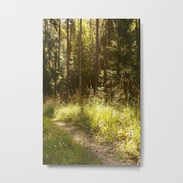 Forest Path Sunny Day #decor #society6 #buyart Metal Print