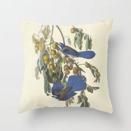 Florida scrub jay by Audubon Throw Pillow