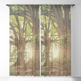 Tree Sheer Curtain