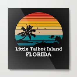 Little Talbot Island FLORIDA Metal Print