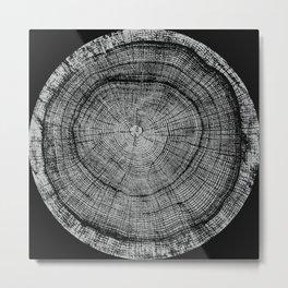 Black and White Oak Tree Metal Print