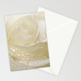 Rose white 01 Stationery Cards