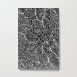 Greyscale Cabbage 1 Metal Print