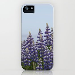 Lupine Flowers Photography Print iPhone Case