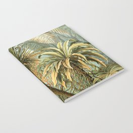 Vintage Tropical Palm Notebook