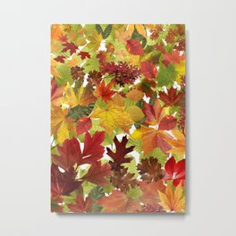 Autumn Fall Leaves Metal Print
