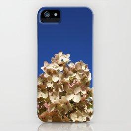 Hansville, WA iPhone Case