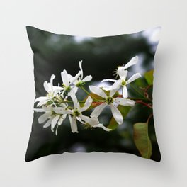 Spring!  Serviceberry blossoms Throw Pillow