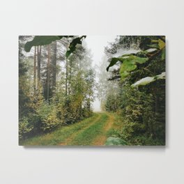 Path in Forrest Metal Print
