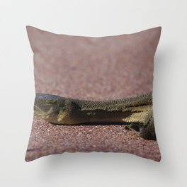 A Long Necked Turtle taken in the wetlands Throw Pillow