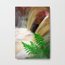 Ferrous thermal water Metal Print