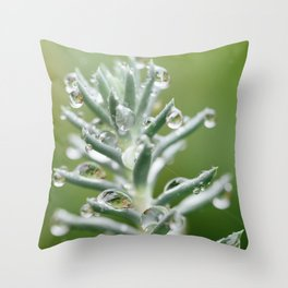 It Was A Day For Bling Throw Pillow