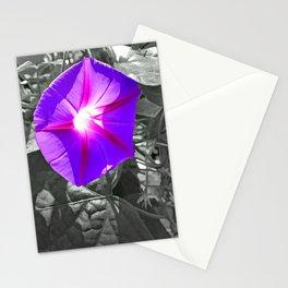 Floral Light Stationery Cards