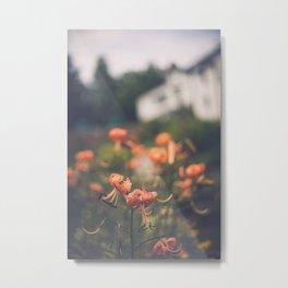 Secret Garden IV Metal Print