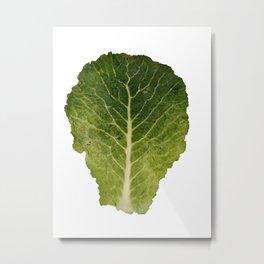 Colour Cabbage 2 Metal Print