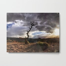 The Snag - Grand Staircase - Escalante Metal Print