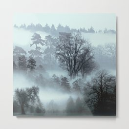 Picturesque Daydreams Metal Print