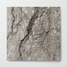Tree Bark A Metal Print