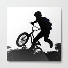Sky Rider 2 Metal Print