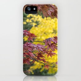 Maple Contrasts iPhone Case