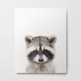 Baby Raccoon, Baby Animals Art Print By Synplus Metal Print