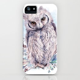 Keeper Of The Crystals, Makers Of Wands iPhone Case
