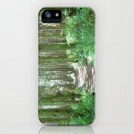 Hansville, Washington iPhone Case