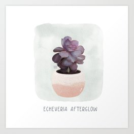 Cute Echeveria Watercolor Illustration Art Print