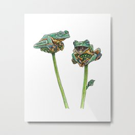 GREEN TREE FROGS Metal Print