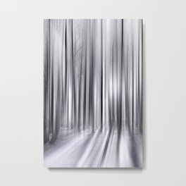 Winter Forest 31 Metal Print