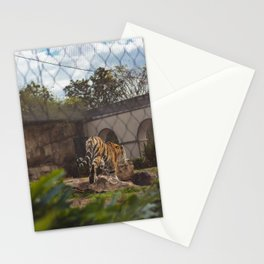 LSU's Mike VI Stationery Cards