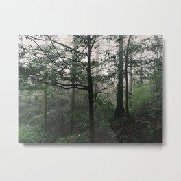 Forest in Japan Metal Print