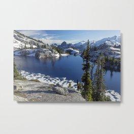 Alpine Wonderland Metal Print