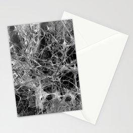 WEB STOCK Stationery Cards
