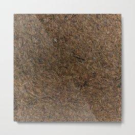 Needle Carpet One Metal Print