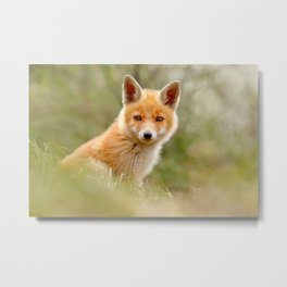 The Face of Innocence .:. Red Fox Kit Metal Print