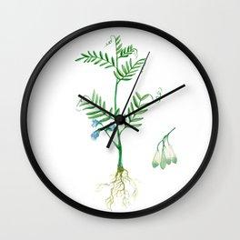 Lentil Wall Clock