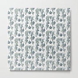 Ernst Haeckel Peridinea Plankton Metal Print