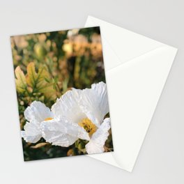 Fried Egg Flowers Stationery Cards