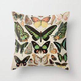 Papillon II Vintage French Butterfly Chart by Adolphe Millot Throw Pillow
