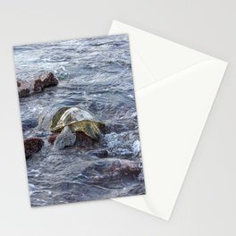 turtlebutt Stationery Cards