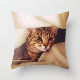 hunting cat Throw Pillow