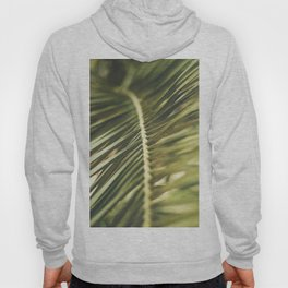 Seville XXVII [ Andalusia, Spain ] Perfect Palm Tree Leaf⎪Colorful travel photography Poster Hoody