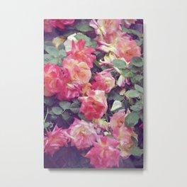 Rose 359 Metal Print