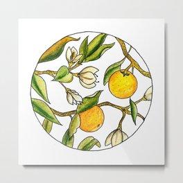 Orange Tree Circular Illustration Design Metal Print