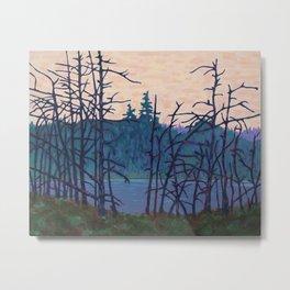 Algonquin Wetland, Algonquin Park Metal Print